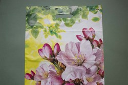 """Пакет """"яблоневый цвет"""" с вырубной ручкой - фото 4783"""